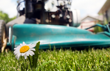 Tips to Maintain Your Lawnmower
